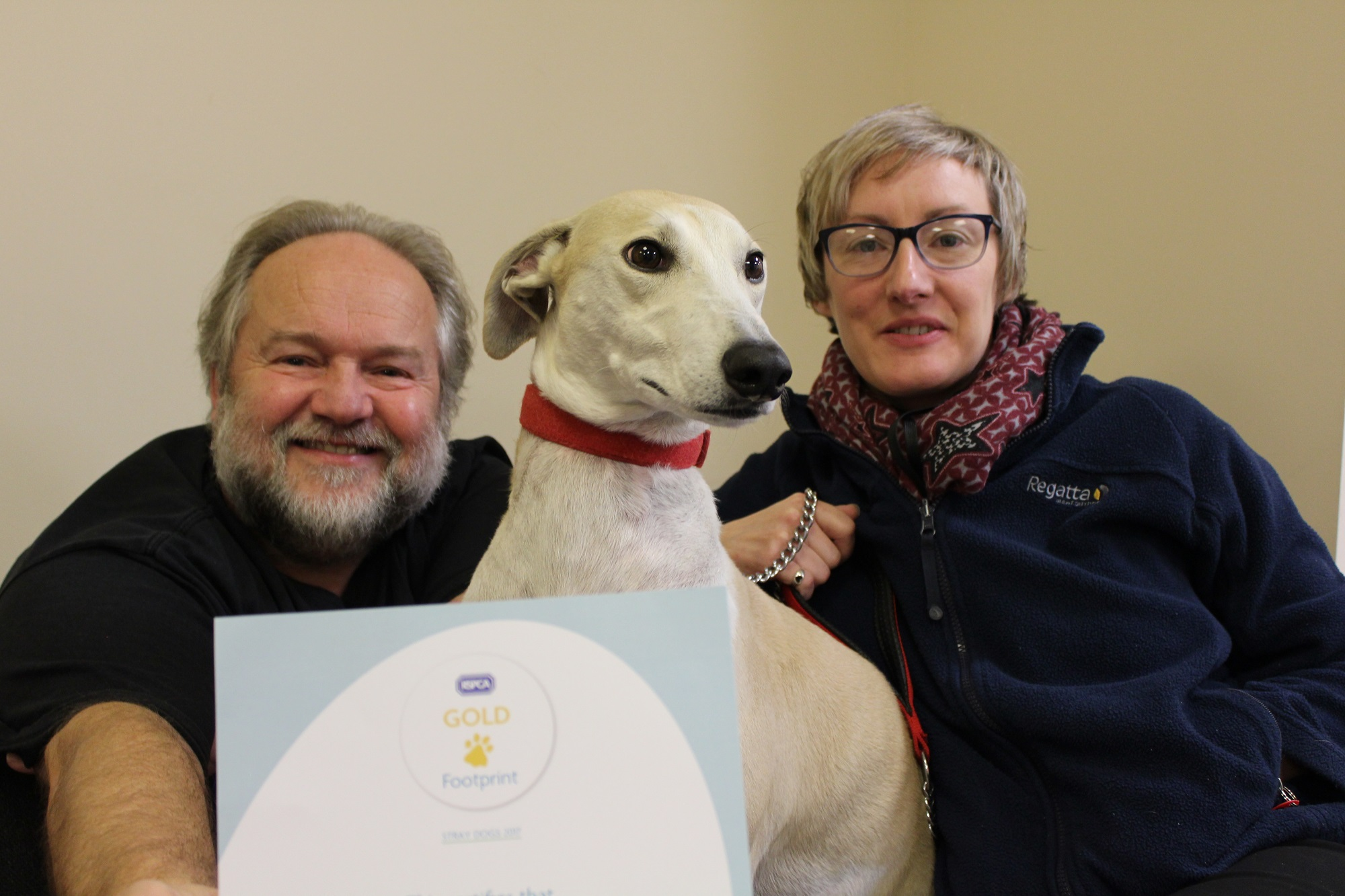 Get your dog checked out by a gold award winning team!