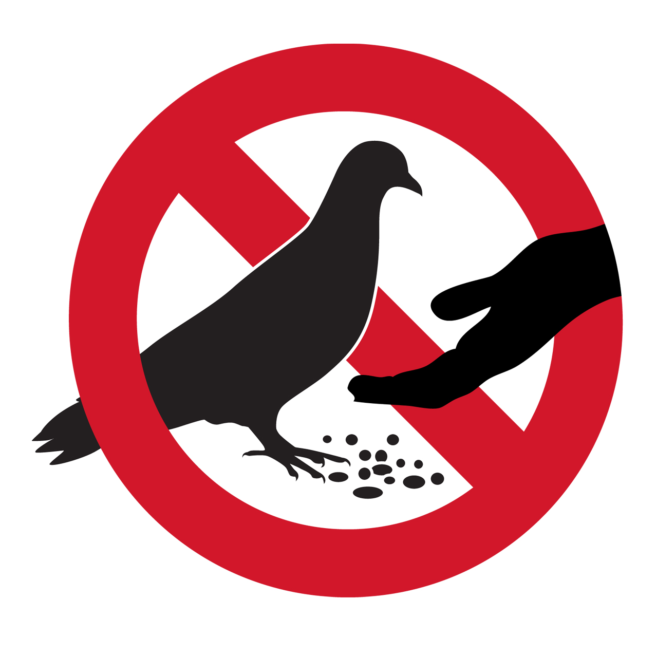 Pendle Council urges people not to feed the pigeons